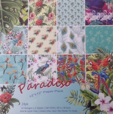 """Paradiso"" Paper"