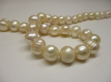 FRESH WATER PEARL +/-50PCS 8MM