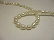 FRESH WATER PEARL +/-60PCS 5MM