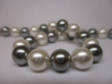 Shell Pearl 8mm +/-50pcs