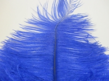 Ostrich feathers 35cm  2pcs #22 blue