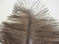 Ostrich feathers 35cm  2pcs #22 brown