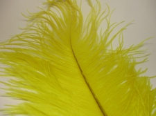Ostrich feathers 35cm  2pcs #22 yellow