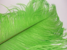 Ostrich feathers 35cm  2pcs #22 green