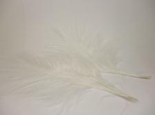 Feathers 15cm 25pcs #16 white