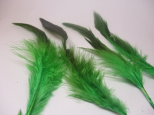 Feathers 15cm #18 50pcs  Lt Green black
