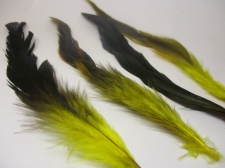 Feathers 15cm #18 50pcs Yellow black