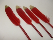 Feathers 15cm #14 10pcs Red gold